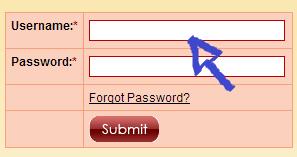 no longer lonely login step 1