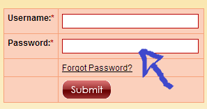 no longer lonely login step 2