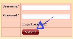 no longer lonely login step 3